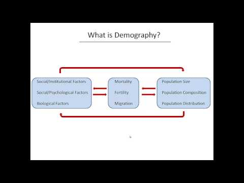 What is Demography?