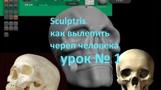 Sculptris - как слепить череп человека урок № 1