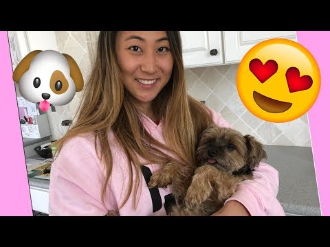 LIZZY SHARER AND OTTER SHARER CUTEST MOMENTS ❤️🐶| COMPILATION