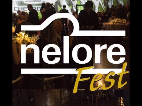 Nelore Fest premia os destaques da raça no ciclo 2016/2017