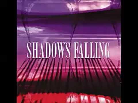 Various – Shadows Falling : 60's Garage Rock, Psychedelic, Beat, Fuzz Punk Music Compilation ALBUM