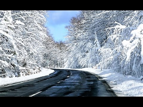 Driving Through Winter Nature, Czech Republic from Travel with Iva Jasperson