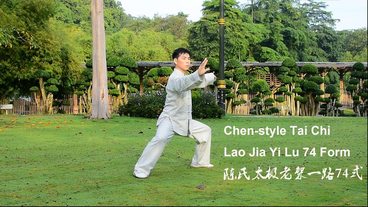 Nice Chen Old Frame First Routine (Lao Jia Yi Lu) 74 Form 陈氏太极老架一路74   Part 1    YouTube