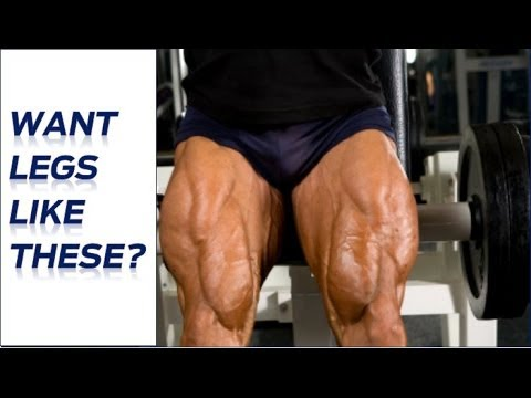 how to build muscle mass in legs