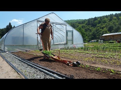 The Importance of Farm Systems with Conor Crickmore