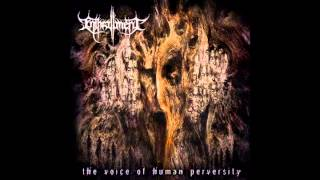Enthrallment - The Voice Of Human Perversity (2014)