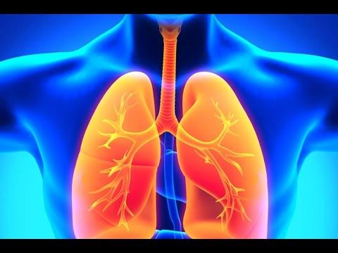 Астма - лечение болезни. Симптомы и профилактика