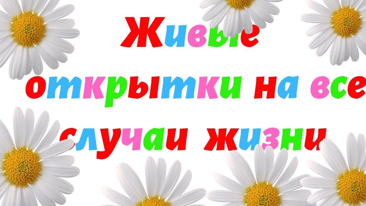 Открытки на все случаи жизни для андроид на русском языке, весной