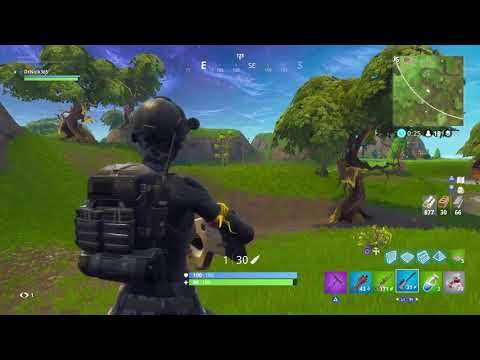 Fortnite solo dub