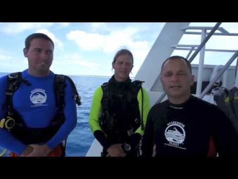 ssi-open-water-scuba-dive-certification-in-3-minutes