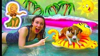 видео Вечеринка с собакой