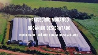 FraiseCroc morango orgânico desidratado