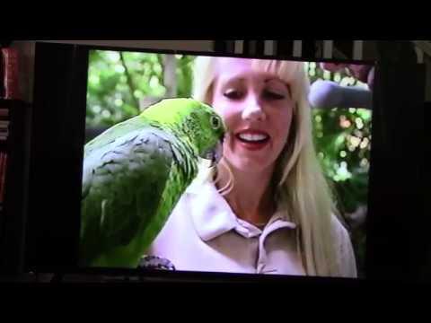 Jack Hanna Bloopers / Jack Hanna's Animal Bloopers ...