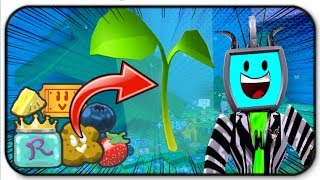 Farming Sprouts For Royal Jelly, Honey, Tickets And Treats - Roblox Bee Swarm Simulator (en)