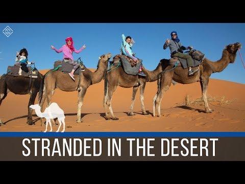 The Sahara Desert Experience - Motorhome Morocco - Episode 56