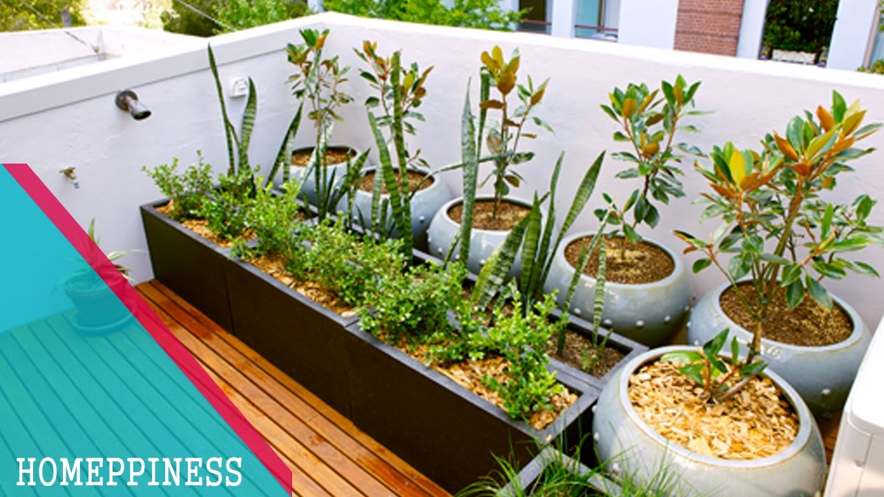 SIMPLE  EASY TO MAKE 30 Small Apartment Balcony Garden Ideas  YouTube