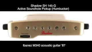 Tam Kjer Murke Cveto - Shadow SH 145-G pickup test
