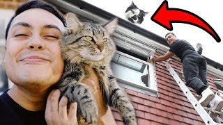 my cat got stuck on the roof... HELP!?!