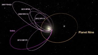 Planet Nine's Orbit, The Kuiper Belt & Sedna