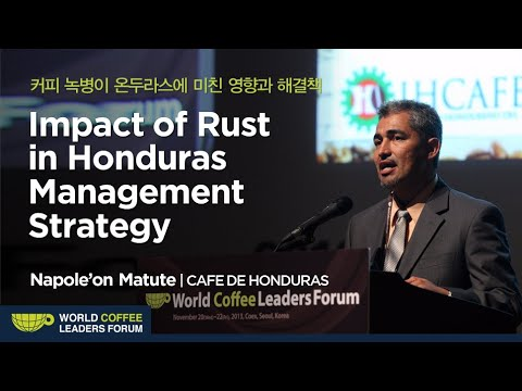 "[WCLF2013] Napole'on Matute : ""Impact of Rust in Honduras Management Strategy"""