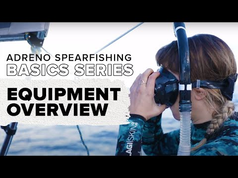 Outline Of The Essential Spearfishing Gear You Need: Basics Of Spearfishing Part 2