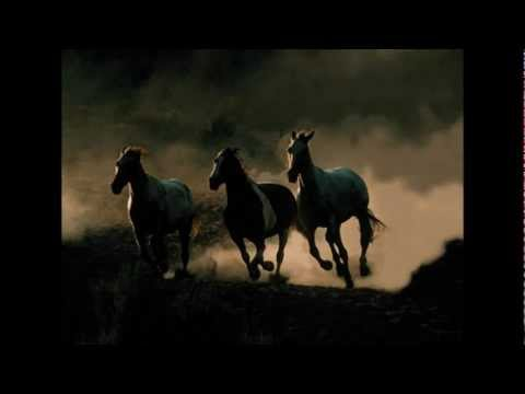 Wild Horses (Garth Brooks) Cover