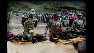 Los Castaño apoyan la cacería a Pablo Escobar (Paramilitares en los 90)