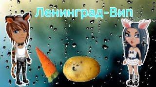 КЛИП ЛЕНИНГРАД - ВИП || СМОТРЕТЬ ДО КОНЦА || NadyaTV