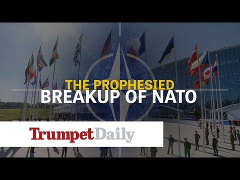 The Prophesied Breakup of NATO - The Trumpet Daily