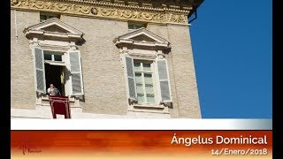Ángelus del 14/01/2018 HD