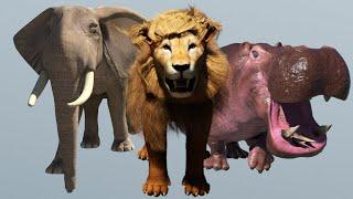 Развивающие мультики про животных для детей Обучающие Животные слон лев верблюд жираф и их звуки