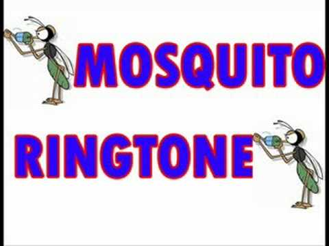 Mosquito Ringtone- The One Teacher's Can't Hear!