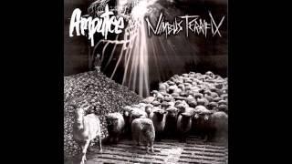 Nimbus Terrifix & Amputee Split Promo