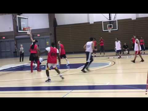 Bassel Harfouch try out with the Windy City Bulls