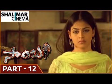 Samba  Telugu  Movie Part  -12/13 || NTR , Bhoomika Chawla , Genelia Dsouza ||shalimarcinema