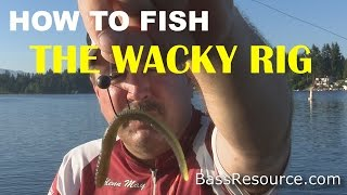 How to Fish a Wacky Rig for Bass | Bass Fishing