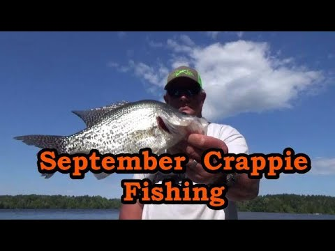How To Catch Crappie In September Tips,locations And Lures/ Catch Early Fall Crappie