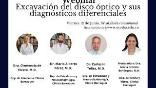 Webinar Excavación del disco óptico y sus diagnósticos diferenciales