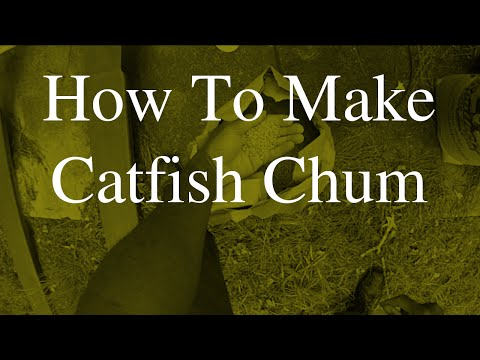 How To Make Catfish Chum