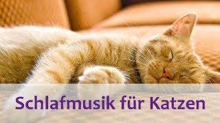 Schlafmusik für Katzen - Entspannende Musik für Katzen und Kätzchen - 2 Stunden.