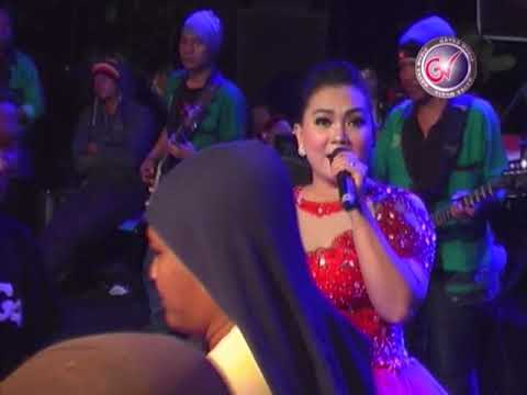 Duda Araban Gavra Live Glonggong Youtube