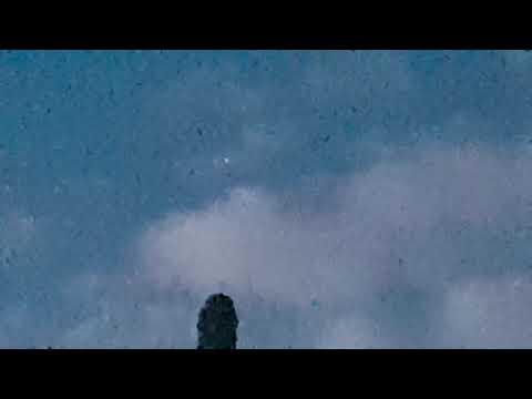 Ufo in morning light over South London garden