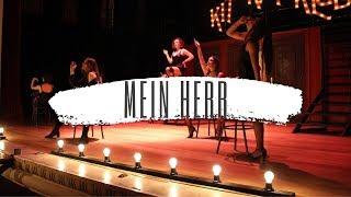 Cabaret. Musical. Mein her