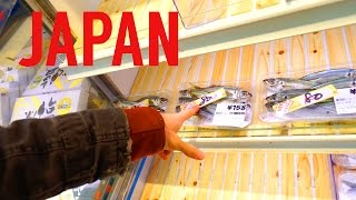 Return to Japan Vlog Day 6 // Hiking Preparations