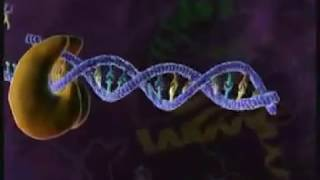 Video HIV Replication 3D Medical Animation HD download MP3, 3GP, MP4, WEBM, AVI, FLV September 2018