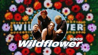 Download Lagu 5 Seconds of Summer 5SOS - Wildflower MP3