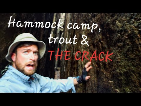 World-Class Trout Fishing & Hammock Camp +