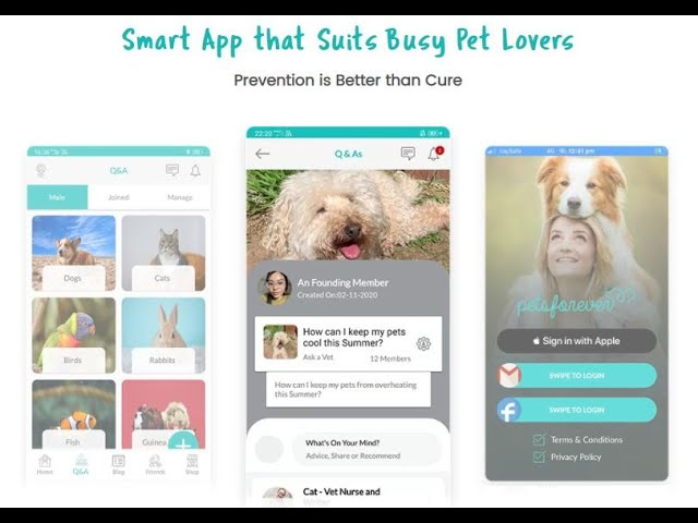 Petsforever Q&A social app helps pet lovers find individualised answers from qualified experts