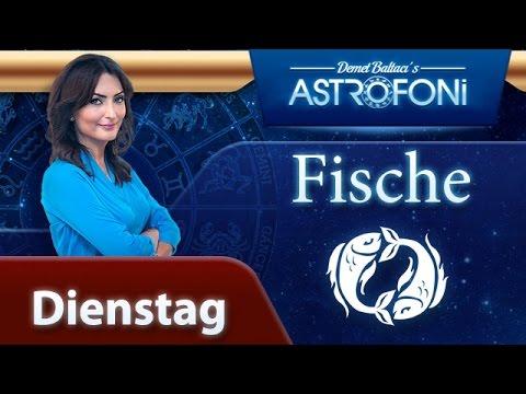 Horoskop Fisch Heute
