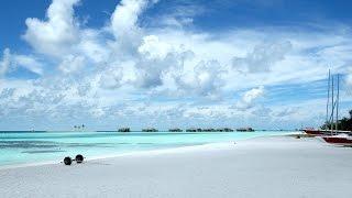 Я лежу на пляже/Алиса Кожикина/Клип